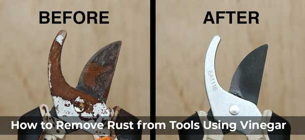 How to Remove Rust from Tools Using Vinegar